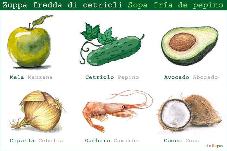 Ingredienti principali zuppa di cetrioli ristorante messicano in Expo